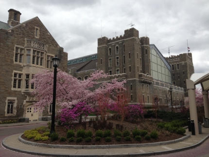 Cornell University Outside of Statler Conference Center